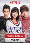 Subtitrare Meteor Garden  - Sezonul 1