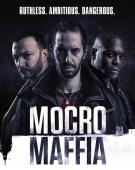 Subtitrare Mocro Maffia - Sezonul 1