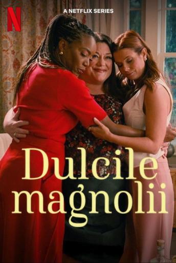 Subtitrare Sweet Magnolias - Sezonul 1