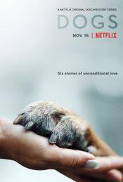 Subtitrare Dogs - Sezonul 1