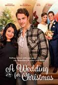 Film A Wedding for Christmas
